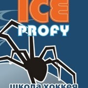 Школа хоккея «ICE-Profy» group on My World