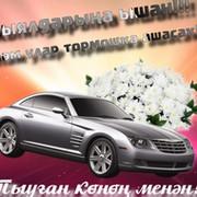 Марьям Асадуллина on My World.