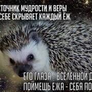 ЕЖИК  В ТУМАНЕ on My World.