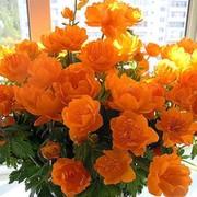 Валентина Мусина on My World.